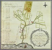A Plan of the Cane land in the Estate of Sir James Douglass...